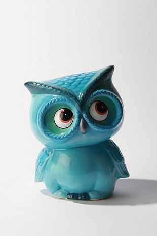 UO Owl