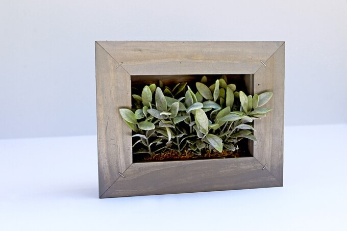 Use A Stapler to Make This Picture Frame Planter DIY