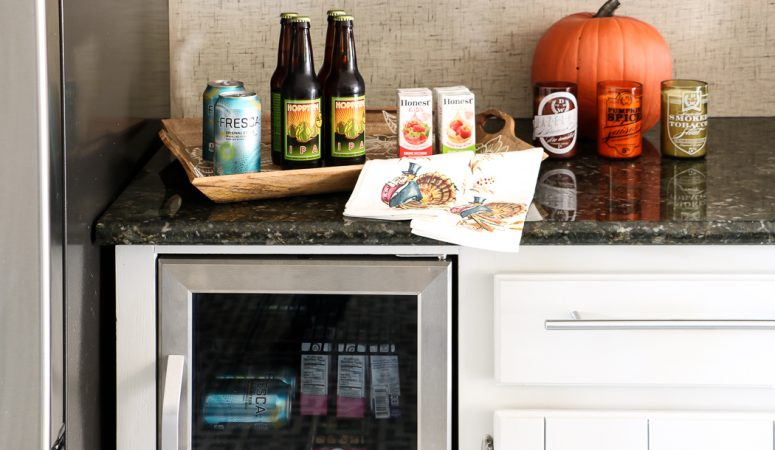 Our Stuffed Fridge Solution + a NewAir Beverage Cooler Giveaway