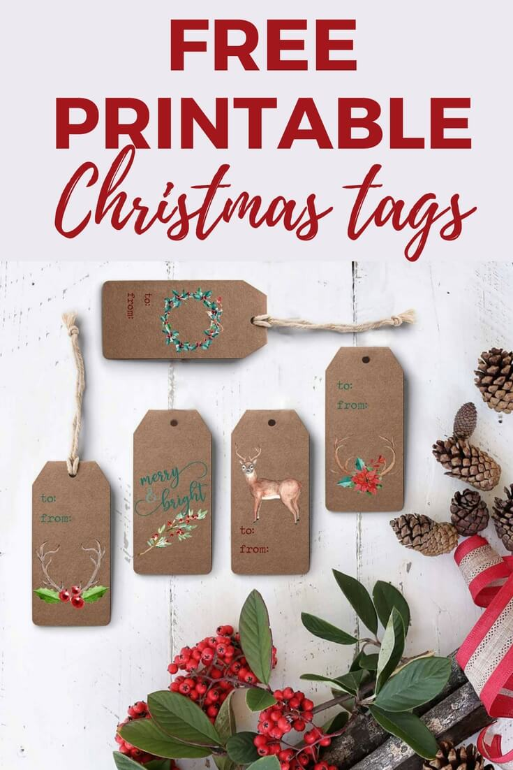 Free Printable Gift Tags for Christmas | Designertrapped.com
