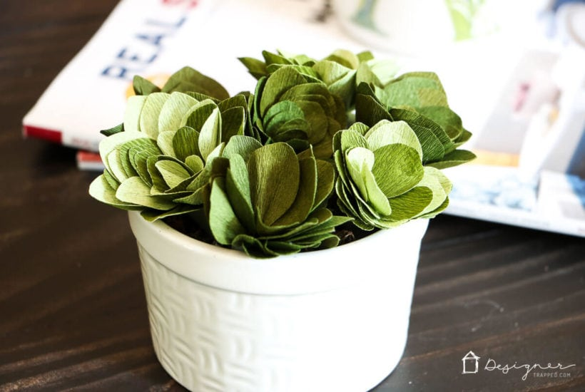 Cricut Cutting Review: DIY Crepe Paper Succulents