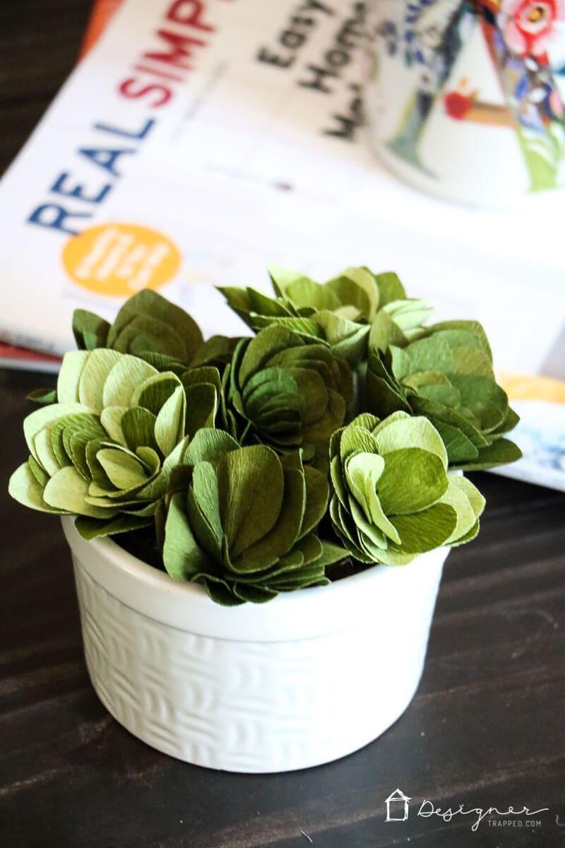 Cricut Cutting Review Diy Crepe Paper Succulents