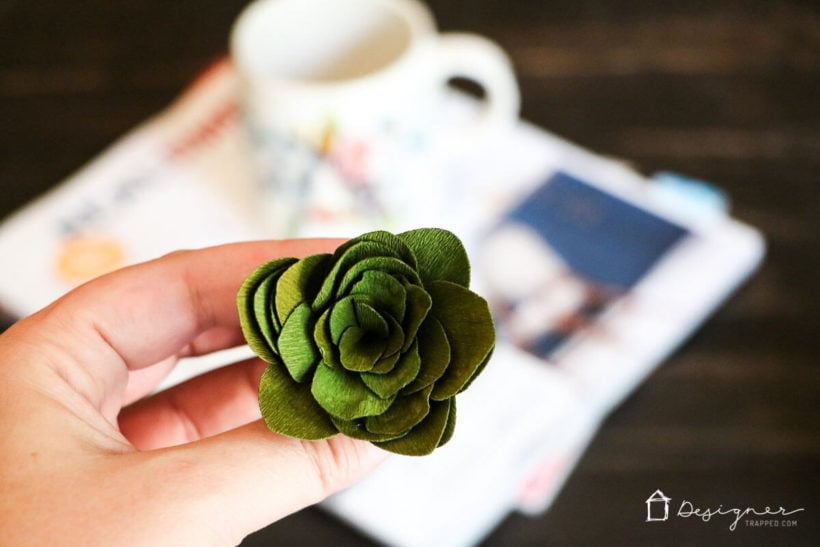 Crepe paper succulents- Cricut cutting review