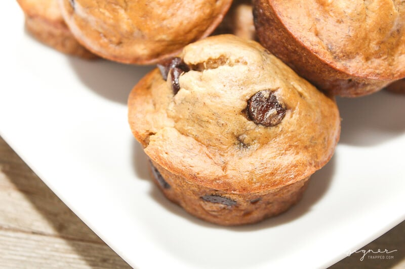 Breakfast is the craziest meal of the day for most of us. Everyone will love these healthy and delicious chocolate chip breakfast muffins. They are the perfect start to a busy day!